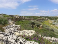 Selinunte muur acropolis
